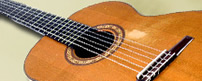 Classical Guitar played at Weddings in Essex